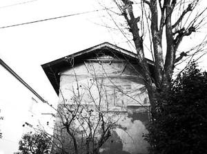 Photo11514
